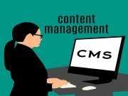 Top 19 Popular CMS Platforms that you need to Know