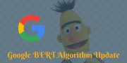 Google BERT Algorithm Update: How to Improve Google BERT Score?