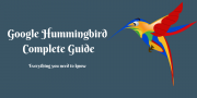 Google HummingBird Algorithm: Complete Guide you Need