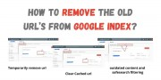 How to Remove the old URL's from Google Index?