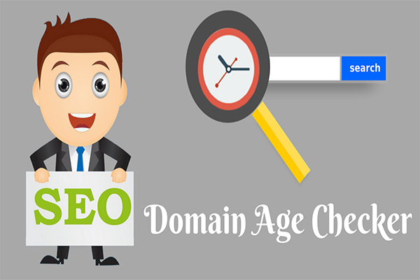 domain age checker