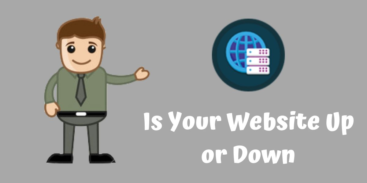 Is your Website Up or down