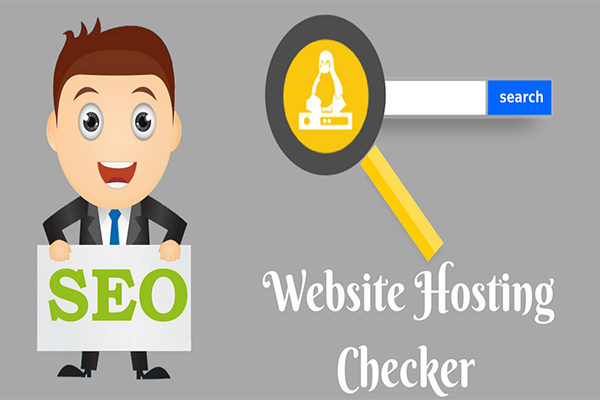 website hosting checker